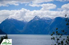 _DSC6476 (Rutas Patagónicas) Tags: patagonia rutaspatagónicas ruta 231 lago yelcho región de los lagos agenciaschaefer