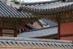 경복궁 - Gyeongbokgung Royal Palace (Bubah!) Tags: 경복궁 temple building gyeongbokgung royal palace seoul korea asia 서울특별시 대한민국大韓民國