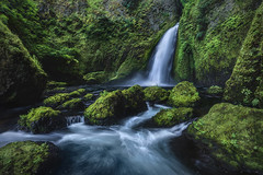 Jurassic Falls (Mark Metternich) Tags: water waterfall waterfalls waterfalle cascades cascade cascading columbiarivergorge oregon forest green luch stream streams river pacific northwest moss roaring markmetternich markmetternichcom tours tour workshops workshop nature landscape surreal surrealscape