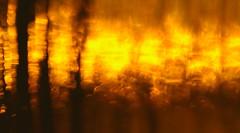 Abstraction. The light of the morning sun. (ALEKSANDR RYBAK) Tags: изображения абстракция свет тень лучистекло макро крупный план фантазия тектура фон images abstraction shine shadow ray glass macro closeup fantasy texture background
