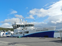 """Inter Caledonia"", Ullapool Harbour, West Coast of Scotland, Aug 2018 (allanmaciver) Tags: inter caledonia fish carrier ullapool wester ross highlands scotland coast broom loch blue sky clouds sunshine warm august white harbour allanmaciver marine harvest"