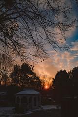 An evening in late Autumn. (bcostin) Tags: 25mm a7rii colorskoparex2825 qbm rollei rolleipol sonya7r2 voigtlander polarizer sony