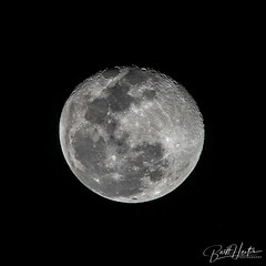 Howling at the Moon (britt_hester) Tags: moon fullmoon moonshot astrophotography sky skypics space sonyimages sonyalpha sonya6000 sony