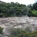 Mud pots, Te Puia, Rotoura, NZ
