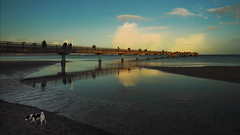 Beach visitors have dressed warmly  -    It's cold on the beach! (Ostseeleuchte) Tags: beach strand scharbeutz winterkleidung winterclothes winteristimanmarsch winterisknockingatthedoor badesaisonistbeendet bathingseasonisover november2018
