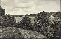 Postkort fra Agder (Avtrykket) Tags: bolighus eng hua postkort skog vei åker tvedestrand austagder norway nor