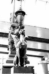 Nihonbashi Kirin 02 RICOH GR 79 (HAMACHI!) Tags: tokyo 2019 japan ricoh ricohgriii ricohimaging ricohgr gr gr3 griii loadtest cameratest monochrome blackandwhite bnw