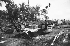 Wreckage (Knapp Family History Photos) Tags: wwii wreckage transport milne bay new guinea