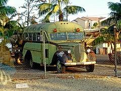 Rusty bus (mark1973r) Tags: