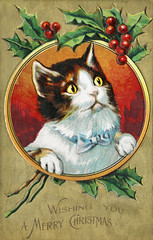 Cat on a Christmas card design (Free Public Domain Illustrations by rawpixel) Tags: jubjang mynt pdproject20 pdproject20batch44 pdproject22 pdproject20batch44x adorable animal antique art artwork calligraphy card cat celebration christmas classic cover cute december decor decoration decorative design drawing element feline font funny greeting happy historic historical history holiday holly illustration merry merrychristmas name noel nostalgia ornament painting print publicdomain retro style text traditional typographic vintage winter wishing wishingyouamerrychristmas xmas
