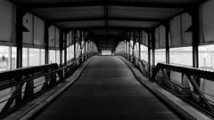 bridge to the landing stage (the.digitaleye) Tags: germany hamburg harbour hafen hafencity landungsbrücken schiffe ships cap san diego elbe bw