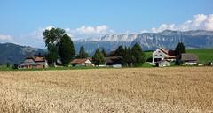 DSC05655 (ursrüegsegger) Tags: linden juli august getreideernte bauernhöfe landschaft regenbogen