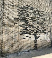 Ash Tree by Pejac (wiredforlego) Tags: graffiti mural streetart urbanart publicart aerosolart bushwick brooklyn newyork nyc brick tree ash wall illusion pejac