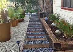 Drought-tolerant Design in Eagle Rock (floresartscape) Tags: droughttolerant landscape landscaping la walkway gravel plants flowers border