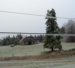 Bilineation (oldoinyo) Tags: trees ice glazing freezingrain icestorm northcarolina