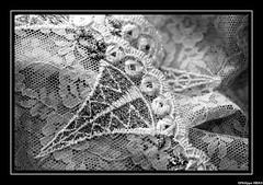11-novembre-texture-60_MG_3744 (pepito2551) Tags: texture dentelle femme canoneos7d sousvêtement soutiengorge slip string lingerie noiretblanc noirblanc bw blackandwhite blackwhite