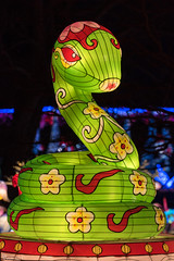 NYC Winter Lantern Festival (dansshots) Tags: dansshots nikon nikond750 nikonphotography lanternfestival lantern statenisland snugharbor festival lights light colorful colors color art sculpture nycwinterlanternfestival winterlanternfestival winterfestival picoftheday pictureoftheday