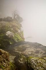 Sources du Guiers Vif (Sébastien Locatelli) Tags: sébastienlocatelli 2019 canon eos 80d savoie saint même cirque chartreuse mist forest forêt winter efs 24mm f28 stm water guiers vif eau river rivière