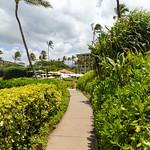 Wailea beachwalk Maui, Hawaii thumbnail
