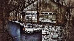 a view to the kill... (BillsExplorations) Tags: abandonedhouse abandonedillinois forgotten sofa decay abandonedfarm winter cold viewtoakill trees oncewashome