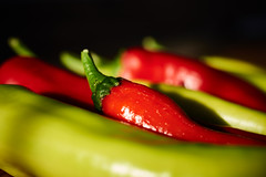 Hot, hot, hot! (iamunclefester) Tags: traunwalchen garden autumn detail macro closeup close chili chilli hot pepper red green color colorful sunset colorcontrast dof harvest harvesttime time season light sunny shadows spicy reflection