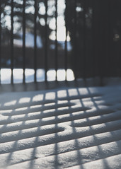 llH\\ (HW111) Tags: bokeh deck lines railing shadows snow winter hollywilson
