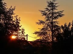 Sunset ... (1110769) (Le Photiste) Tags: clay sunset lépinlelacfrance panasonic france panasonicdmcfz4 landscape trees sun francelandscape perfectview mostrelevant mostinteresting great vividstriking oddview ngc nature planetearthnature planetearth autofocus afeastformyeyes photographyvision lookforthebetter