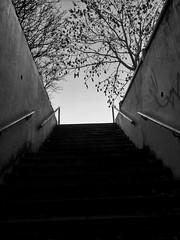 Underpass, Hayfield. #underpass #hayfield #sky #trees #architecture #blackandwhite #derbyshire #highpeak (thereticent1) Tags: underpass blackandwhite derbyshire architecture hayfield highpeak sky trees