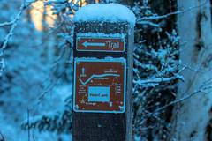 537A6424 (sullivaniv) Tags: alaska eagle river biggs bridge hiking group
