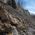Paleosol (Cave Branch Member, Slade Formation, Upper Mississippian; Clack Mountain Road Outcrop, south of Morehead, Kentucky, USA) 25 thumbnail