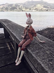 A day by the seaside (Koshou) Tags: doll dollchateau dollleaves bjd balljointeddoll cute rabbit bunny ocean sea nature