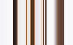 Shell of Fib (roanfourie) Tags: photosignature fibonacci shell white brown