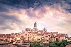 Old town of Siena, Tuscany. (nigel_xf) Tags: siena toscana toskana tuscany panorama sun sonne italia italien italy nikon d750 nigel nigelxf vsfototeam clouds wolken himmel sky altstadt historisch historical unesco heritage weltkulturerbe worldheritage