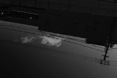 L1100951-2 (Zengame) Tags: leica leicasl leicasltyp601 oshiage sl summilux summiluxsl50mmf14asph japan tokyo typ601 ズミルックス ズミルックスsl ライカ 押上 日本 東京 東京都 jp