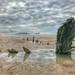 Helvetia shipwreck