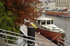 Thierry 7 (SAGL PHOTOS44) Tags: nantes saintaignandegrandlieu loireatlantique france 44 îledeversailles