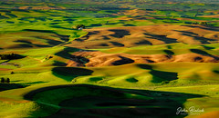 Palouse Farm Land_04 (John Bielick) Tags: 2018 america colfax copyrighted johnbielick northamerica palouse park photogtrekker statepark steptoebuttestatepark thestates theunitedstates us usa unitedstates unitedstatesofamerica washington whitmancounty farmland field rolling hill green farming scenic