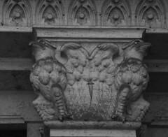 Gufi - Palazzo del Ragno - Quartiere Coppedé