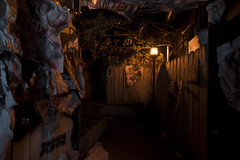 Night Outside (ShapesIndustries.com) Tags: hauntedbasement spooky halloween underground fear evil sets scenes stages displays exhibit attraction experience theater dark