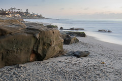 Winter Beach Scene, Windansea, San Diego, CA (Photos By Clark) Tags: california beachshots subjects location northamerica canon2470 canon5div unitedstates sandiego cities locale places where us pacific lightroom thesandiegoist beach water sand rocks waves longexposure tide houses beachhut lastofthelight