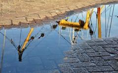 Reflectie / Reflection (wilma HW61) Tags: reflection reflectie riflessione réflexion water wasser waterplas étang stagno pond detail details nederland netherlands niederlande nikond90 holland holanda paísesbajos paesibassi paysbas europa europe wilmahw61 wilmawesterhoud outdoor straat street stenen stones brick