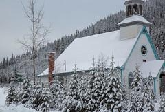 Little church (BLEUnord) Tags: neige snow arbres trees conifères chapelle church abandonné hiver winter parc park laurentides laurentians létape
