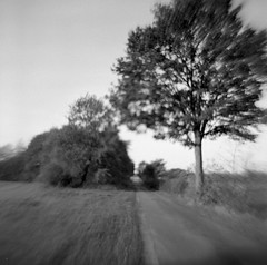 Road into the fields (Rosenthal Photography) Tags: ilfordfp4 ff120 asa125 epsonv800 mittelformat 6x6 20181201 schwarzweiss ilfordrapidfixer analog agfaclicki path pathway way track road landscape tree fields mood autumn november agfa click click1 meniscus 725mm f88 flippedlens revertedlens ilford fp4 fp4plus lc29 129 epson v800