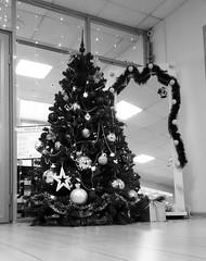 Christmas tree (msergeevna) Tags: christmas christmastree spruce tree новыйгод елка праздник рождество