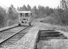 Boonies scenic, 1978 (clarkfred33) Tags: railmotorcar scenic adventure railroadadventure 1978 speeder florida track vintage vintagephoto historic aclhistory floridarailroad abandoned