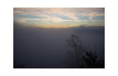 zurich uetliberg view (2) (Toni_V) Tags: m2409527 rangefinder digitalrangefinder messsucher leicam leica mp typ240 type240 35lux 35mmf14asphfle summiluxm uetliberg fog nebel mist herbst autumn zurich kantonzürich switzerland schweiz suisse svizzera svizra europe sunrise sonnenaufgang ©toniv 2018 181110