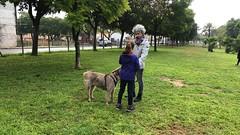 IMG_8557 (Doggy Puppins) Tags: educación canina adiestramiento canino perro dog