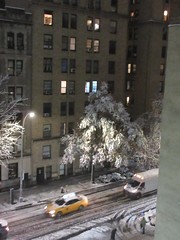 2018 November Evening Blizzard Snow Tree - Front Yard 5126 (Brechtbug) Tags: 2018 november evening blizzard snow storm front yard hells kitchen clinton near times square broadway nyc 11152018 new york city midtown manhattan snowing storms snowstorm winter weather building fog like foggy hell s nemo southern view ny1snow