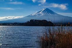 January Fuji at Lake Kawaguchi (shinichiro*) Tags: 20190117sdim8008 2019 crazyshin sigmasdquattroh sdqh sigma1770mmf284dcmacrohsm january winter yamanashi lakekawaguchi japan jp fuji