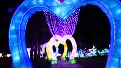 At the Glow Park in Dubai Garden Glow (Ankur P) Tags: dubai uae arab emirates newdubai gulf gcc gardenglow glowpark zabeelpark burjkhalifa unitedarabemirates